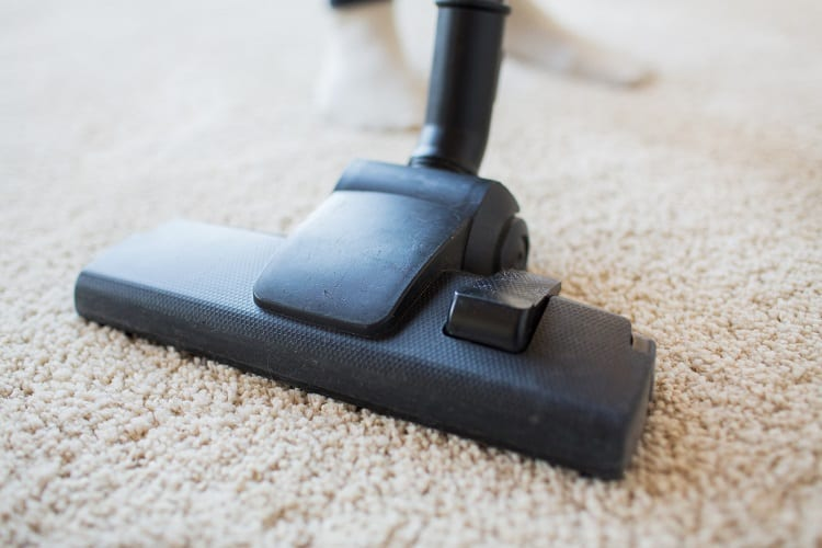 How to start a carpet cleaning business with no money