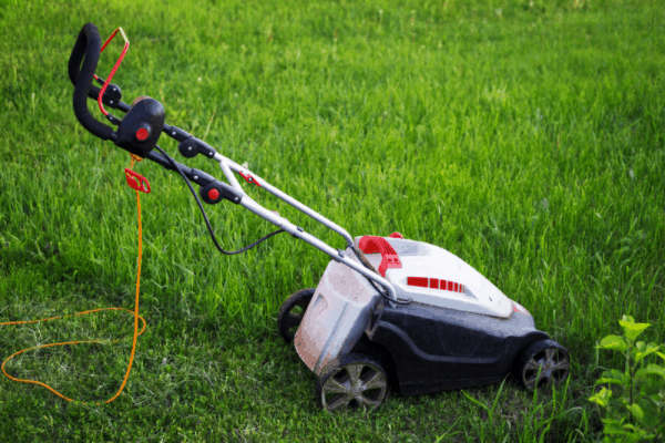 start a lawn care business with no money